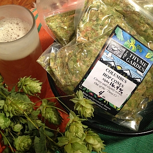 Dried hop pellets and hop cones.